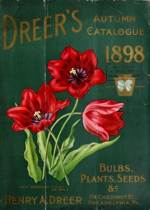 Front cover of 'Dreer's Autumn Catalogue' 1898... (via Bloglovin.com )