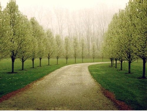 Long Driveway Ideas Country Roads