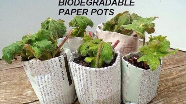 Best Easy Diy Biodegradable Newspaper Pots For Seedlings 400 x 300