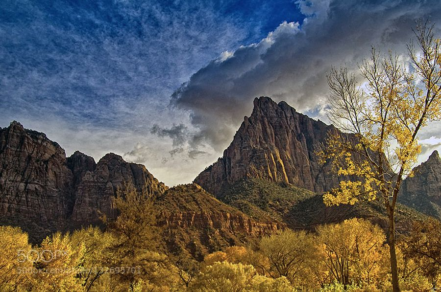 A haunting presence in Zion by Mauritta