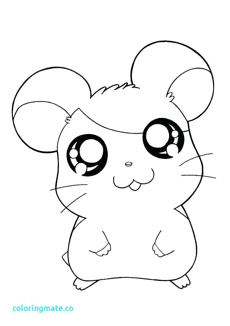 Kawaii Coloring Pages Image Kawaii Coloring Pages For Adults Pokemon Coloring Pages Pokemon Coloring Animal Coloring Pages