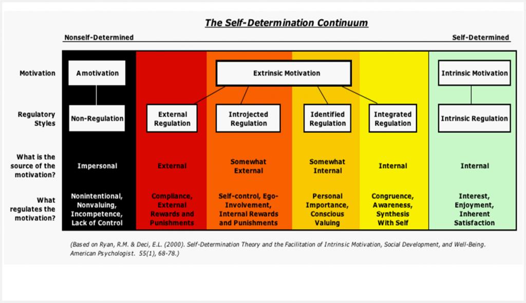 self determination theory diagram interesting wouldn 39 t u. Black Bedroom Furniture Sets. Home Design Ideas