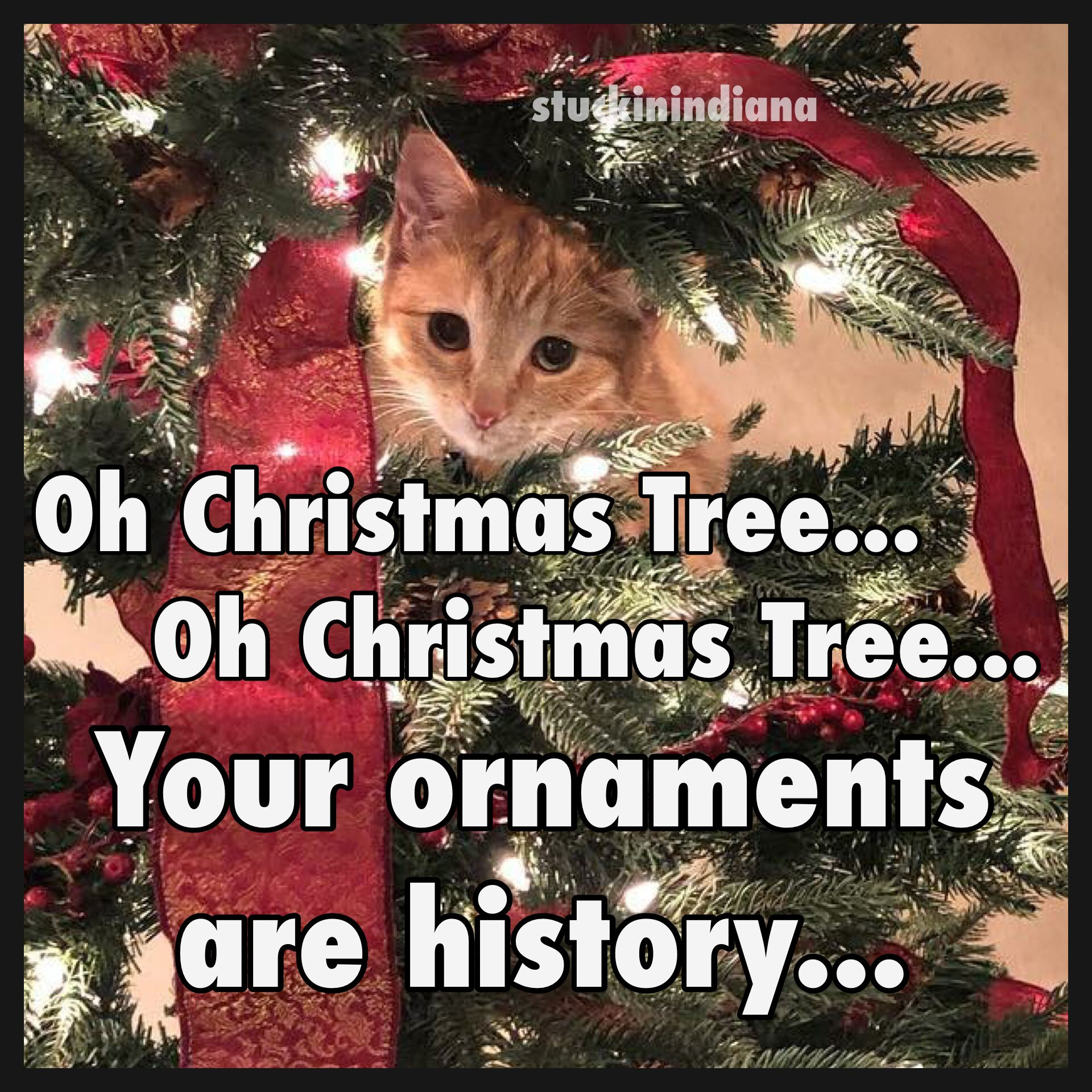 Oh Christmas Tree Oh Christmas Tree Your Ornaments Are History
