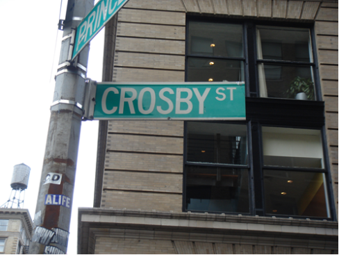 """I'm one of the lucky one's. Thanks to my amazing Aunt Maddy, I Elizabeth Rossi live in a rent controlled loft apartment in New York City's downtown neighborhood of Soho. Crosby Street to be exact."""
