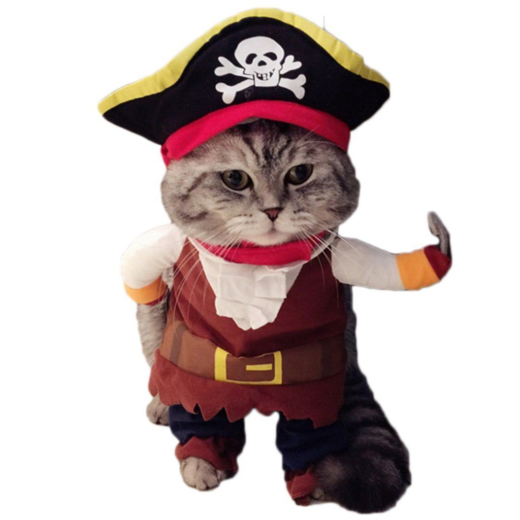 Give Your Little Friend A Little More Beautiful Or Dangerous By Dressing Them In This Cat Dog Pirate Costume This P Pet Costumes Cat Clothes Funny Cat Clothes