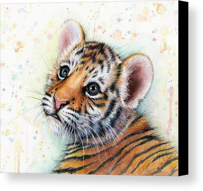 Tiger Wall Art Modern Hand Signed Limited Edition print of my Original Illustration of Tiger
