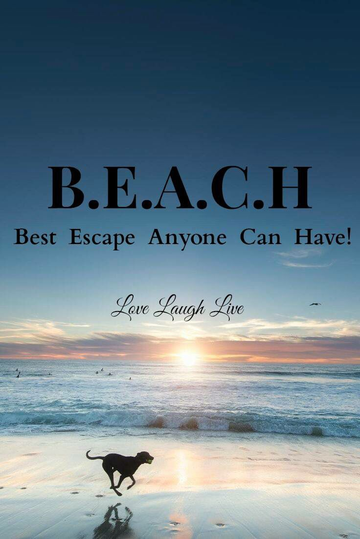 Beach Truth Let S Go Baby I Ll Come Get You Let S Begin