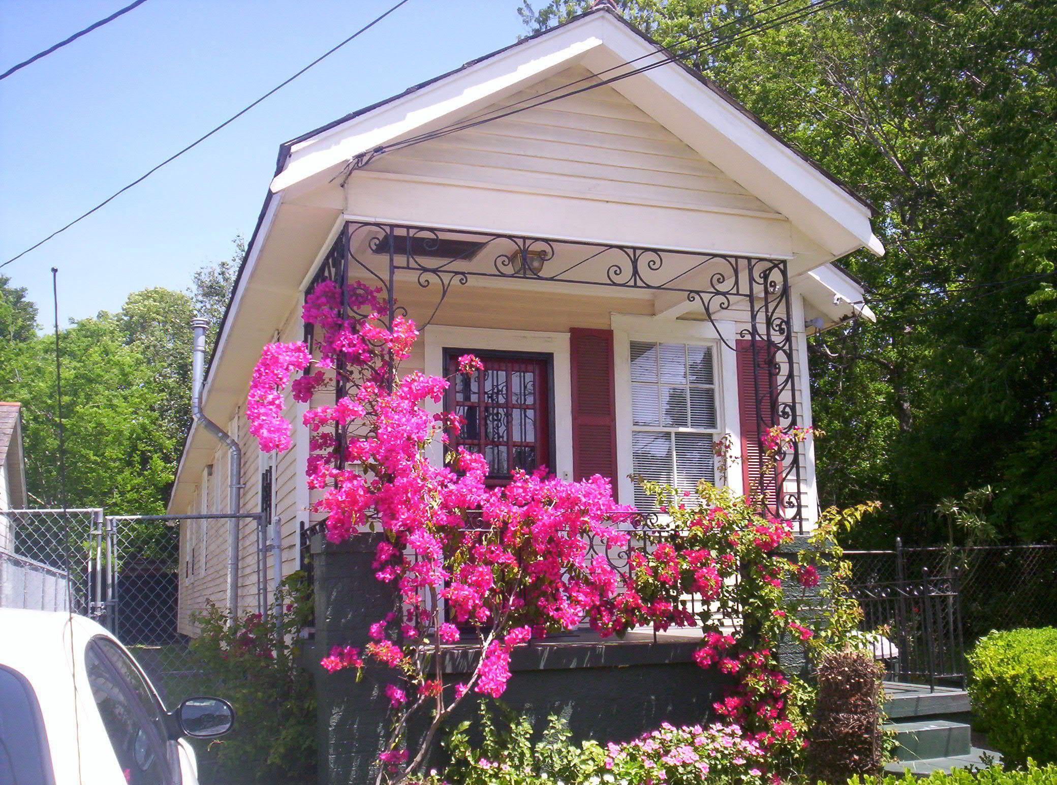 The Caribbean  New Orleans Shotgun House Shotgun And Unusual - Caribbean homes designs