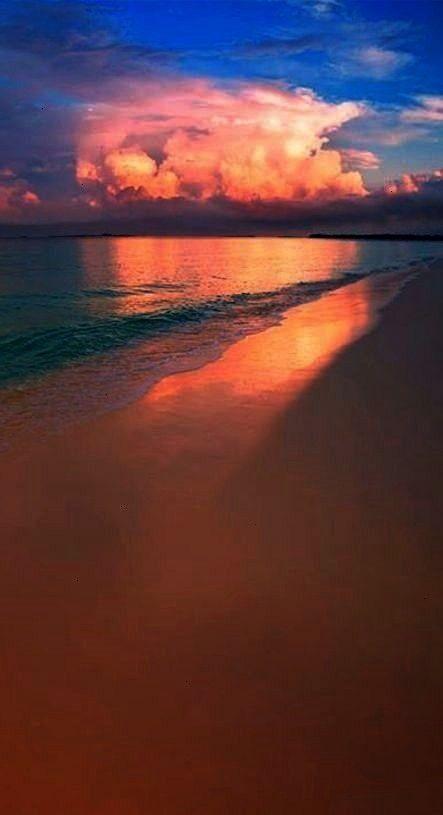 Nature        Best Photography Nature  Season Backdrops Summer Backdrops Beach Background Sunset X3