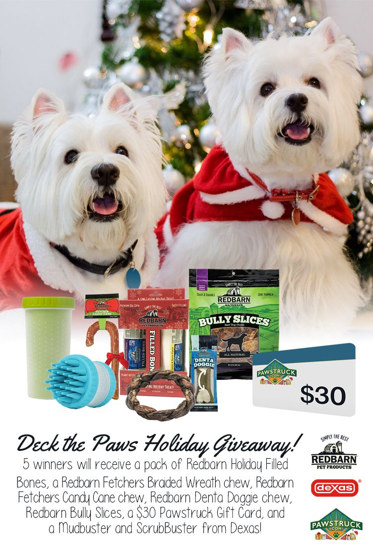 Deck The Paws Holiday Giveaway Win Your Dog S Favorite Holiday