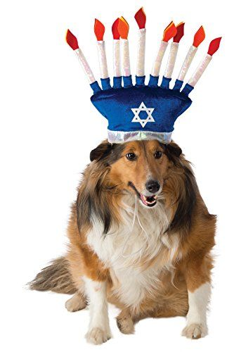 Rubie S Menorah Dog Costume Rubie S Https Www Amazon Com Dp B00wbbg2wq Ref Cm Sw R Pi Dp X Zdy6xby90v498 Christmas Dog Outfits Dog Gifts Pet Costumes