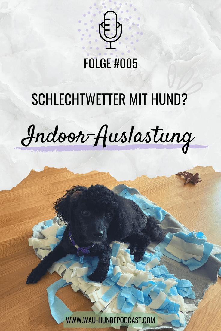 Pin Auf Wau Der Osterreichische Hunde Podcast
