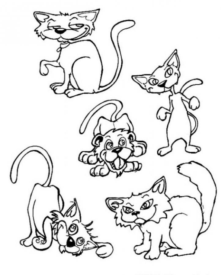 Find The Intruder Coloring Page With Cats Amazing And