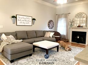 Sherwin Williams Agreeable Gray in living room with gray sectional couch, area rug, fireplace, mirror. KYlie M E-design and Online Color consulting #sherwinwilliamsagreeablegray