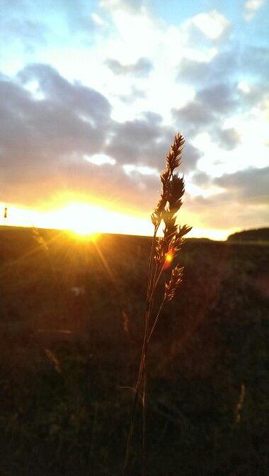 Sonnen Untergang Hardert