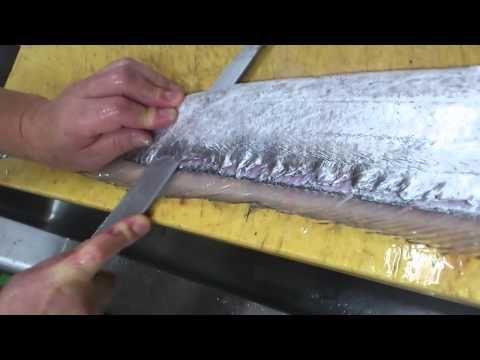 太刀魚がお寿司になるまで A hairtail to sushi