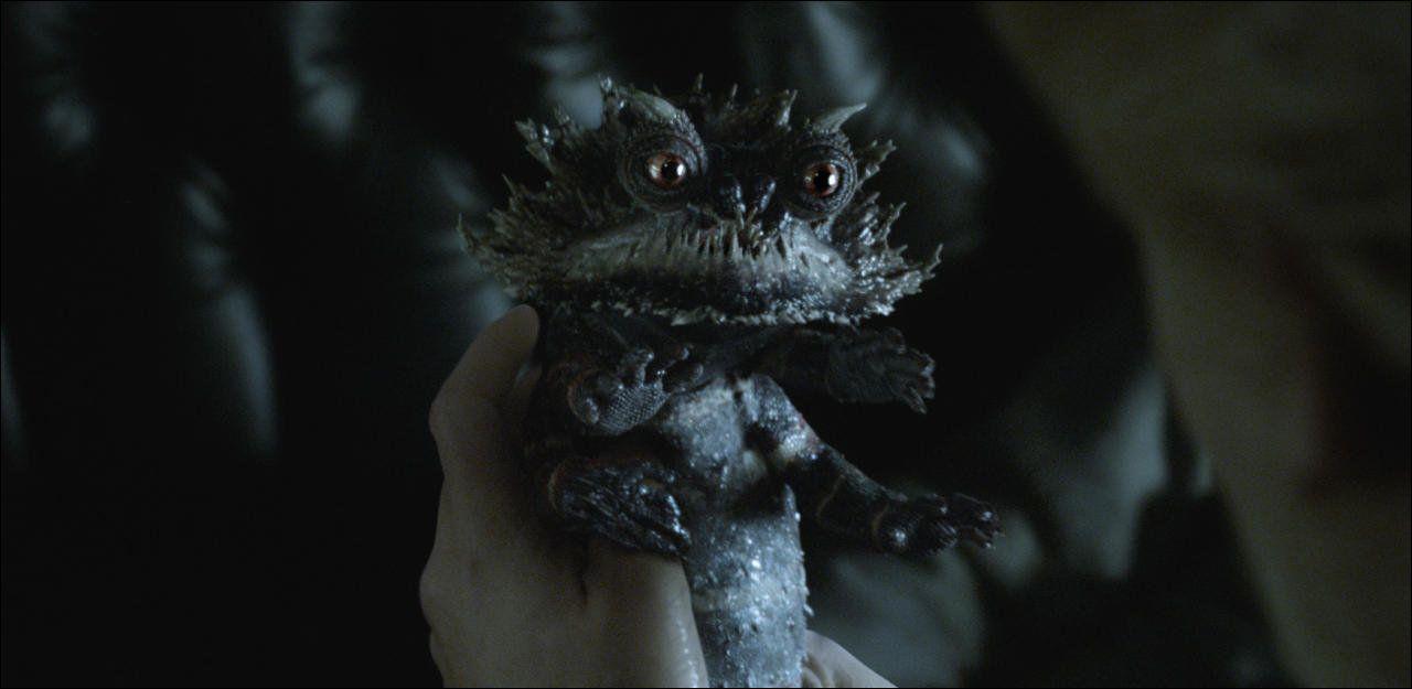 von augurey bis zouwu newts phantastische tierwesen im kino tv