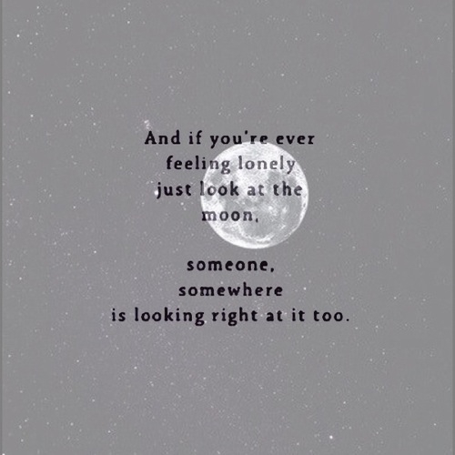 Post Anything From Anywhere Customize Everything And Find And Follow What You Love Create Your Own Tumblr Blog Today Moon Quotes Words Friendship Quotes