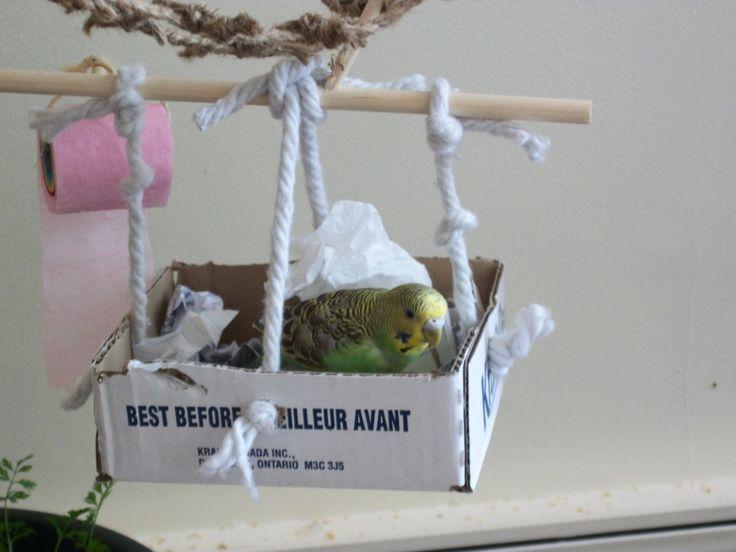 Wellensittich Spielzeug Plastik Vogel