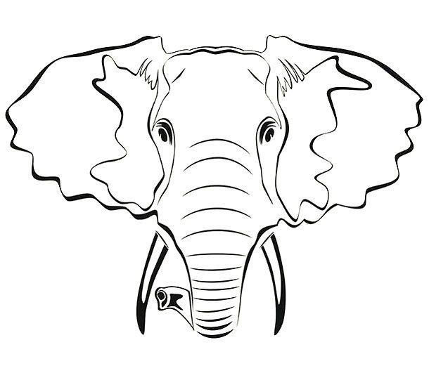 Elephant Outline Tattoo Design Elephant Outline Elephant