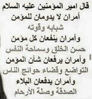 امير المؤمنين امير القول قول الامير Ali Quotes Nice Inspirational Quotes Author Quotes