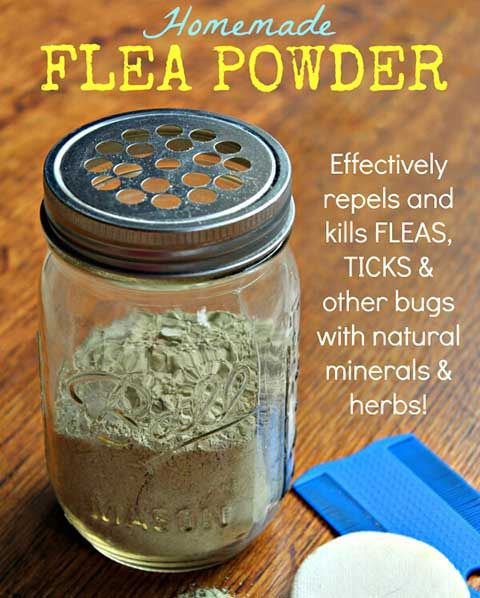 Flea Powder For Dogs, Flea Remedies