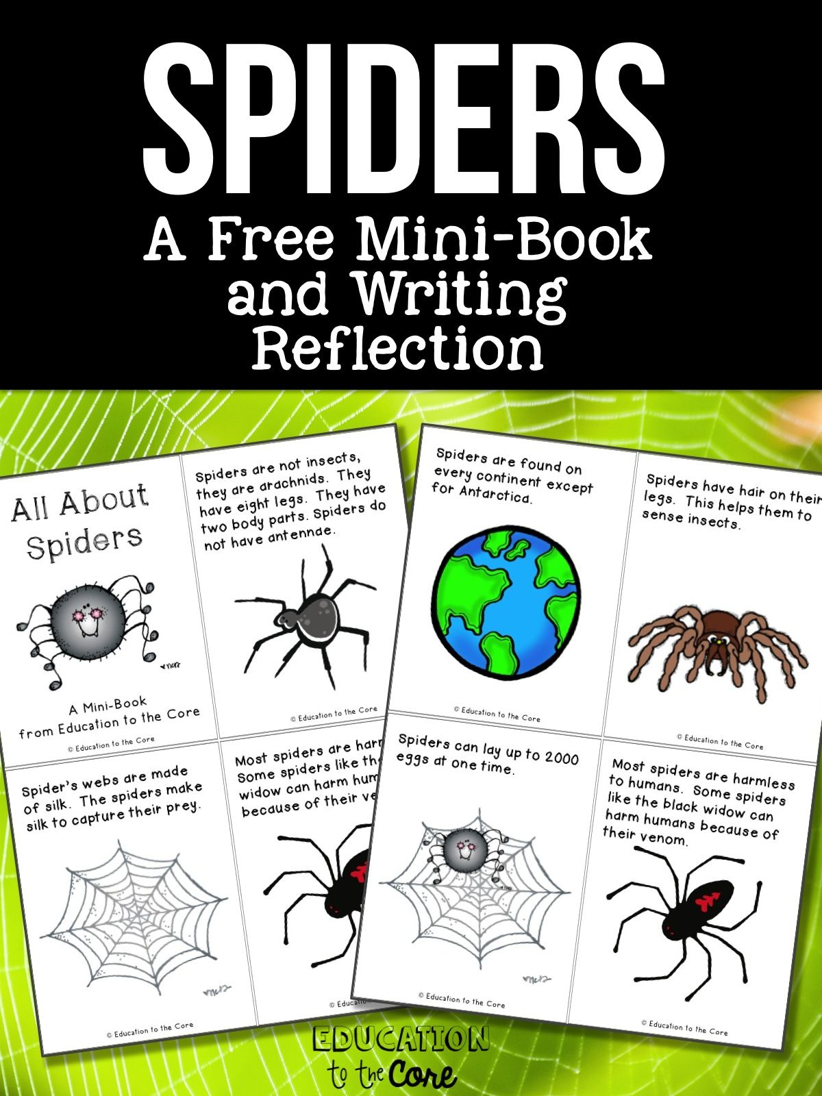 Spiders Free Mini Book And Writing Reflection
