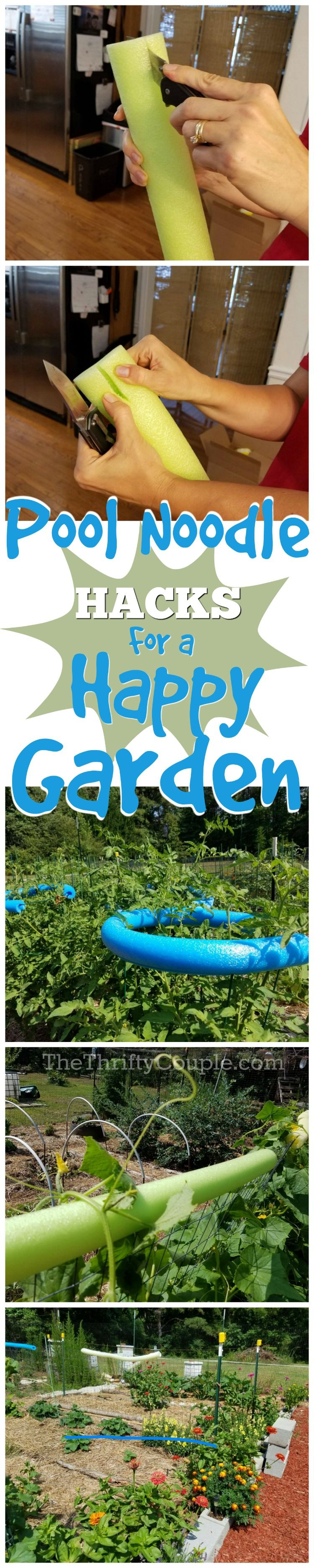Why You Should Use Pool Noodles In Your Garden Pool Noodle Gardening Organic Gardening Tips Garden Pool Pool Noodles