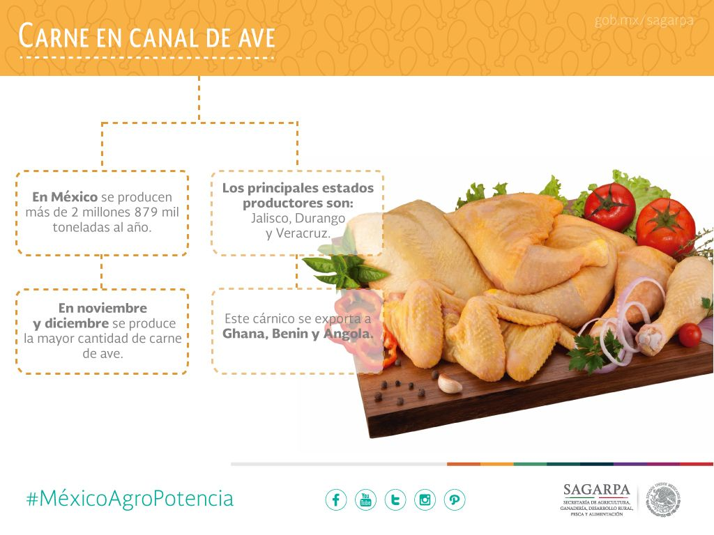 Carne en Canal de Ave. SAGARPA SAGARPAMX #MéxicoAgroPotencia