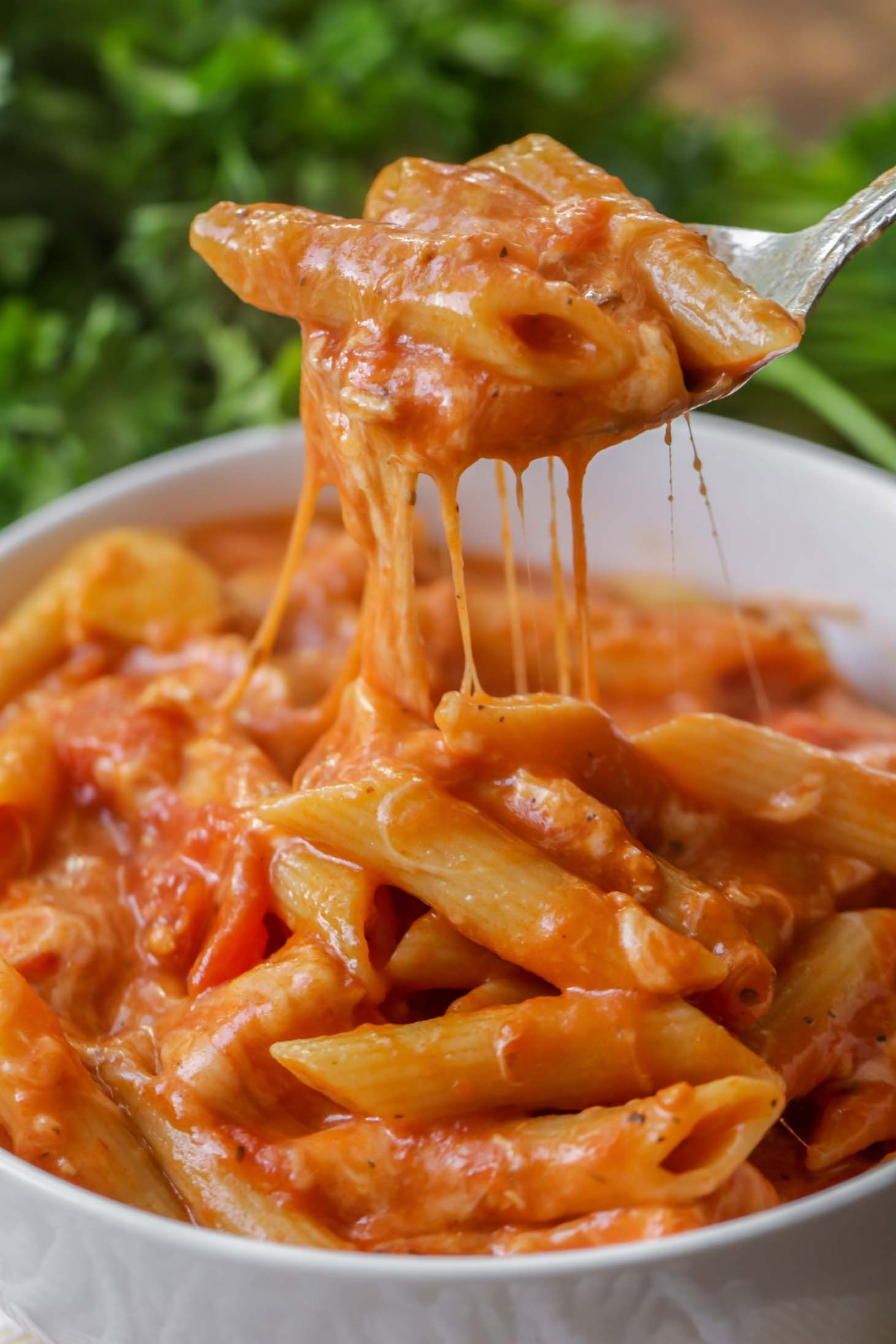 Cheesy Chicken Parmesan Soup | Lil' Luna