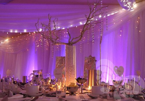 Bows Hire Crystal Trees To Hire With Images Crystal Tree