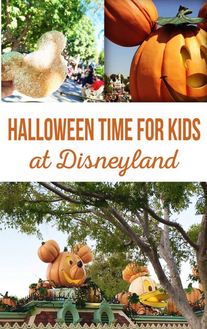 Best Diy Crafts Ideas For Your Home  Halloween for Kids at