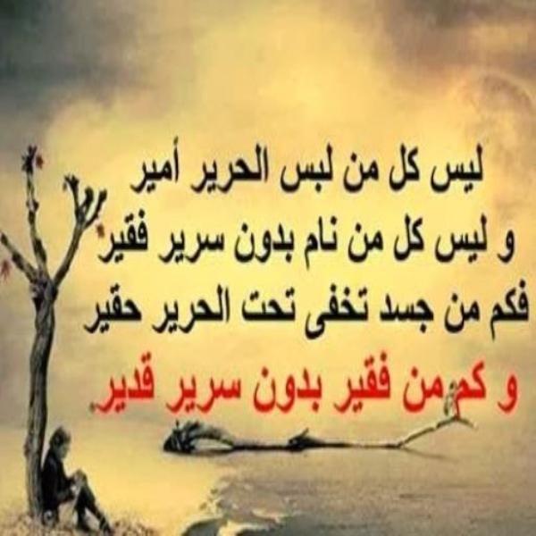 نصائح من ذهب مجموعة مميزة من صور لكروت بها أجمل العبارات Arabic Quotes Inspirational Quotes About Success Words