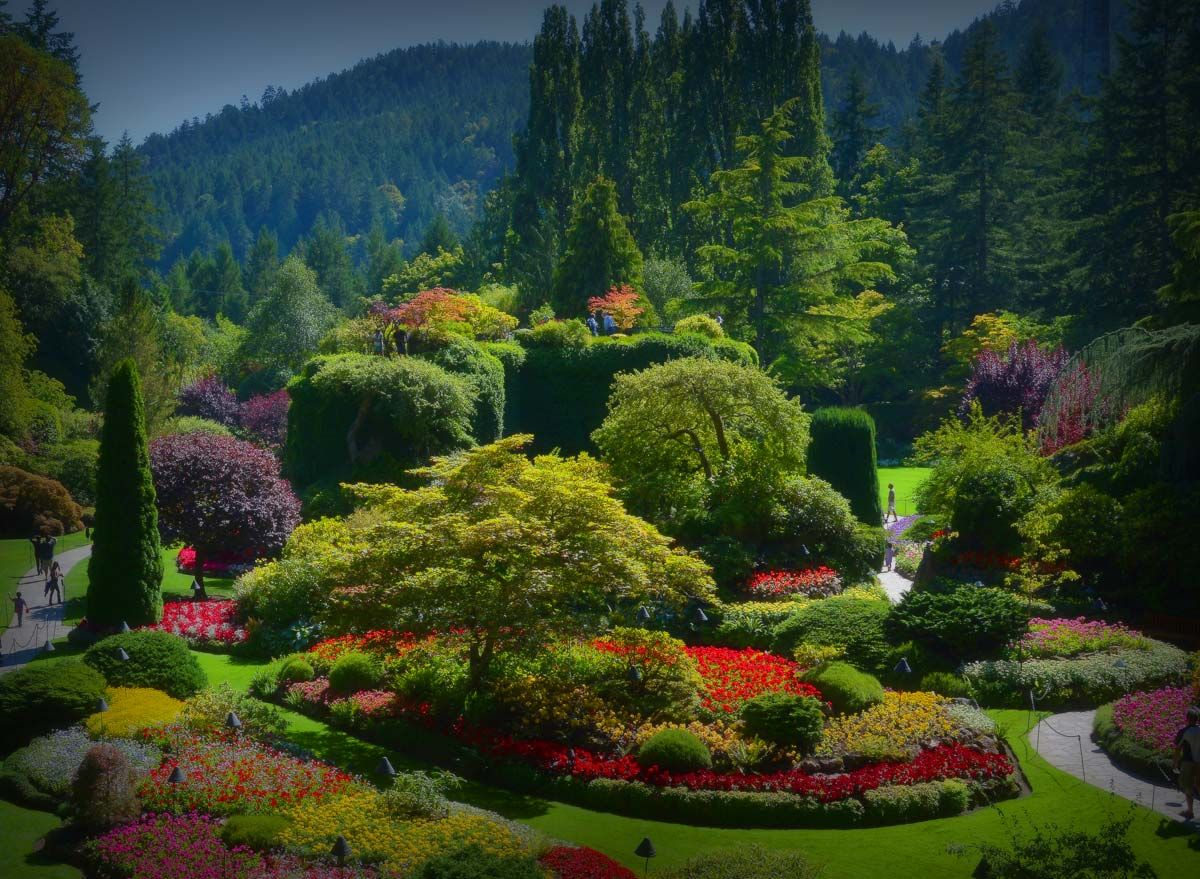 The butchart gardens is one of the most beautiful gardens i have the butchart gardens is one of the most beautiful gardens i have ever seen nothing like strolling through the gardens and then hanging out for some elegant thecheapjerseys Image collections