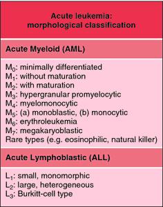 FAB classification, acute leukemias | definition of FAB
