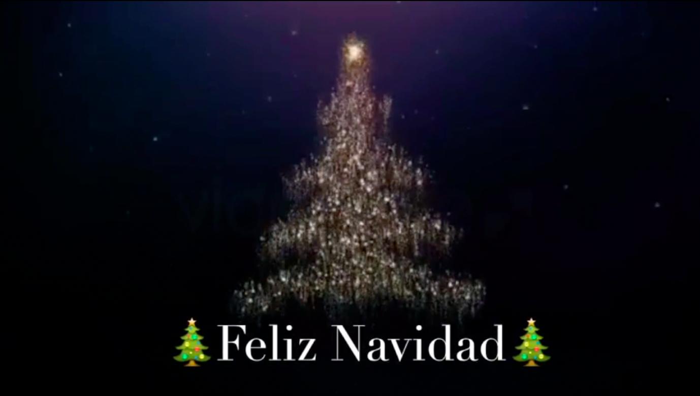 Descarga el v deo de la feliz navidad para enviar por - Felicitar la navidad por whatsapp ...
