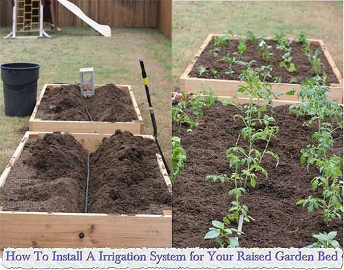 how to install a irrigation system for your raised garden bed rh pinterest ca