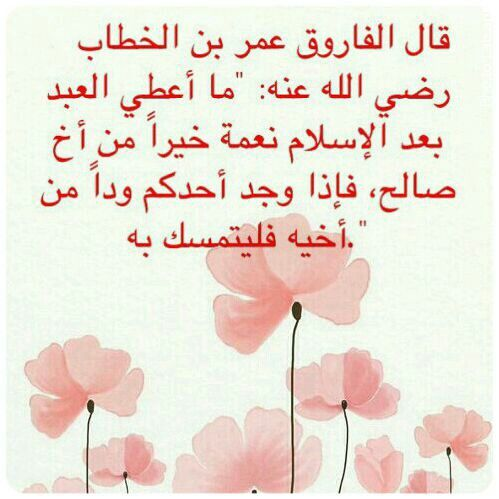 Pin By Afaf Wehby On أقوال حكيمة Pretty Quotes Funny Arabic Quotes Arabic Quotes