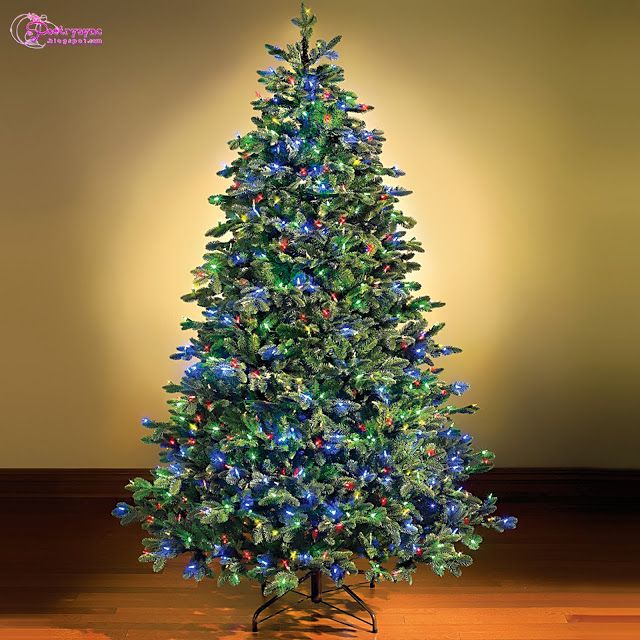 christmas tree decorated with blue lights looking beautiful