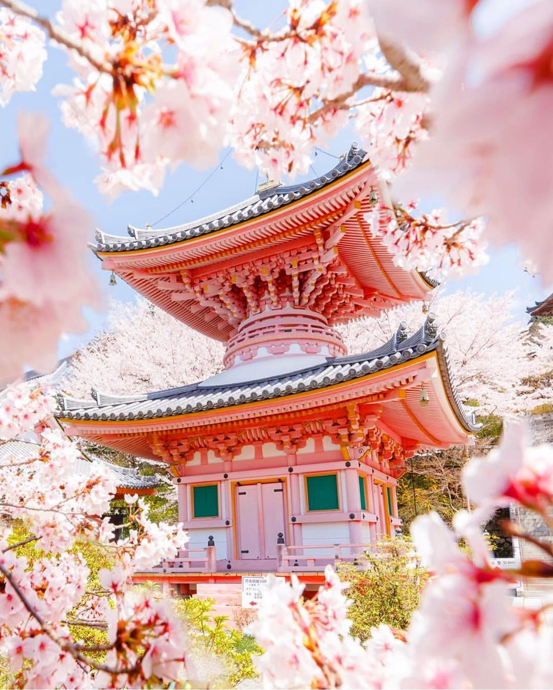 Travel Insurance Options For Traveling Abroad In 2020 Japan Photo Japanese Temple Explore Japan