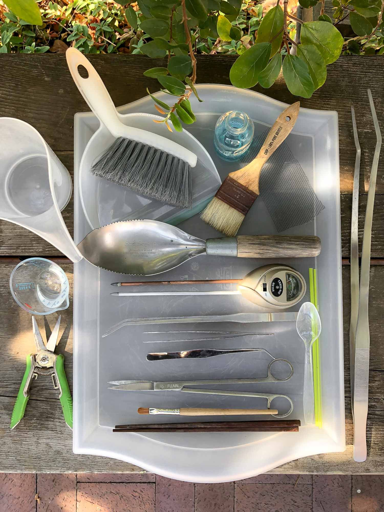 Essential Tools For Your Succulent Garden Gardening Tool Kit