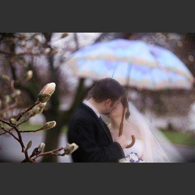 Wedding photography - Wedding Gallery - Motophoto Weddings - MOTOPHOTOGR #weddings #weddingphotos #spring #umbrella