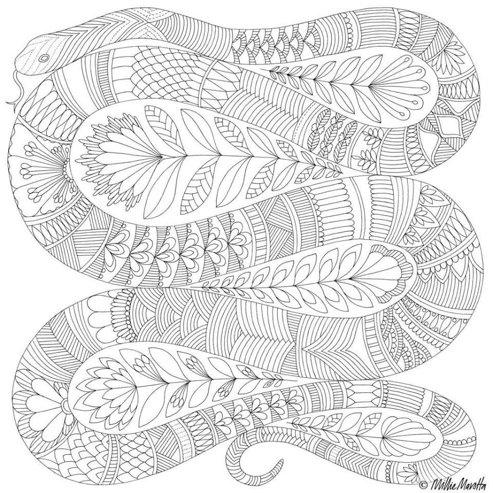 Pin By A A Smit On Wilde Dieren Snake Coloring Pages Millie Marotta Coloring Book Coloring Pages