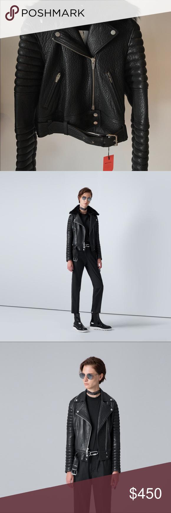 The Arrivals Rainier Black Size Xs M Leather Jacket Women Shopping Black [ 1740 x 580 Pixel ]