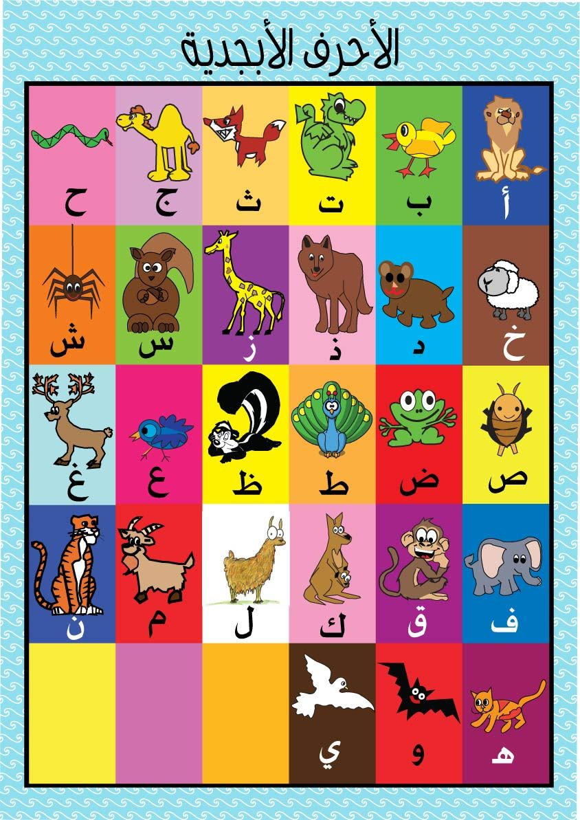 Animals Poster Arabic Alphabet Arabic Toy Learning Arabic