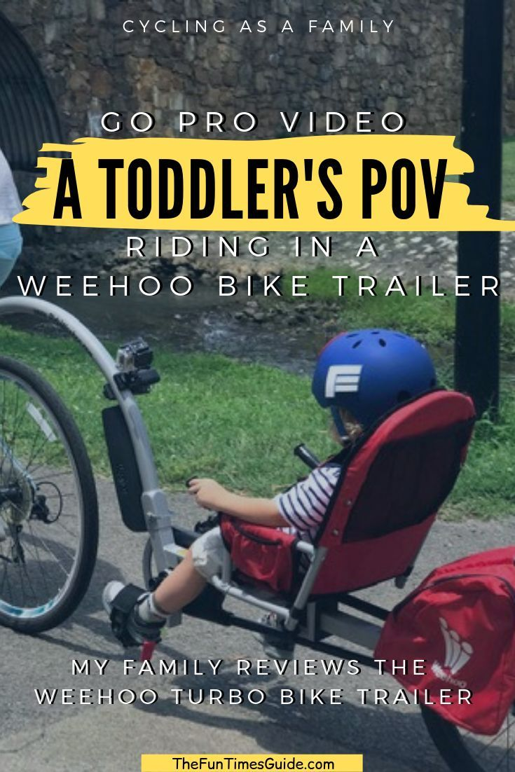 Looking For A Bicycle Trailer For Your Child? We Bought A
