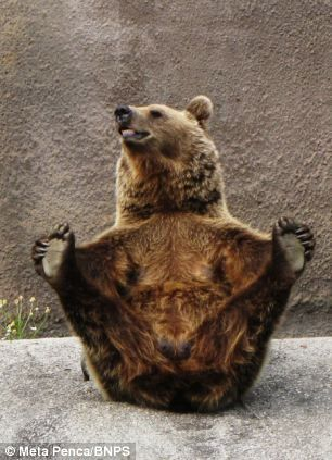 Stretch.....