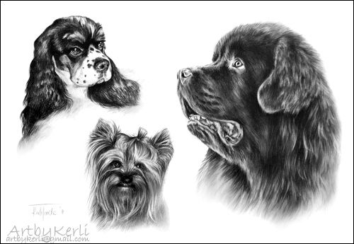 Kelly, Tipsu and Kalisto by ArtbyKerli.deviantart.com on @deviantART