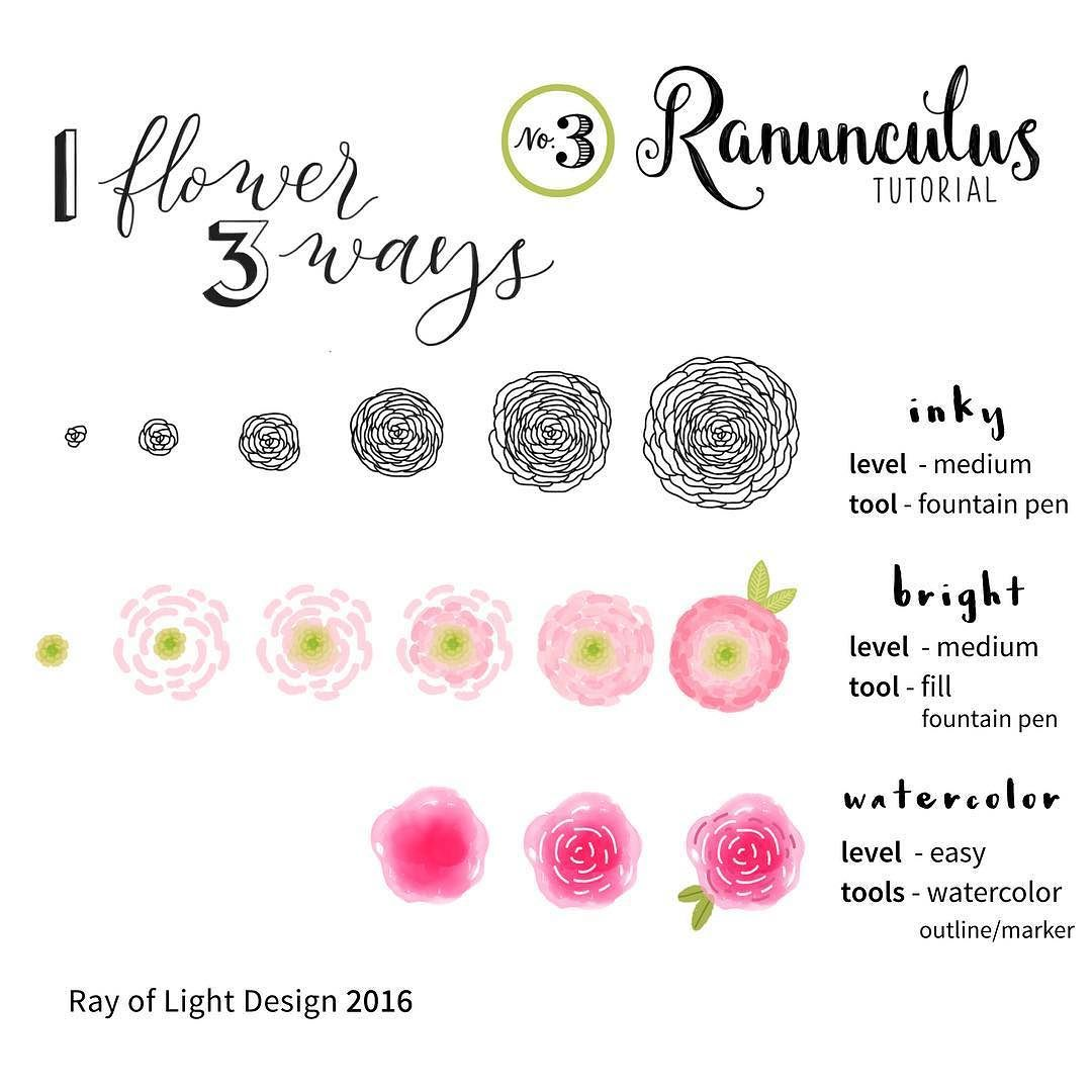 Tutorial On 3 Ways To Draw A Ranunculus Flower As Requested By