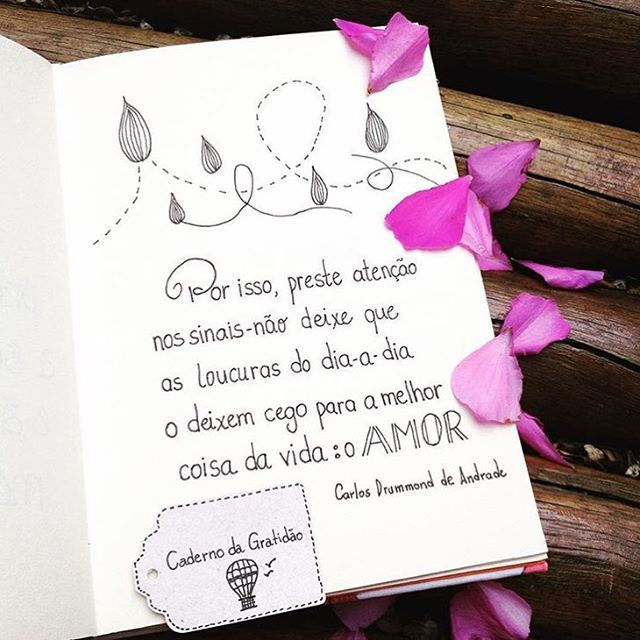 Bom dia!  #bomdia #donadecasa #segundafeira #maenamassa